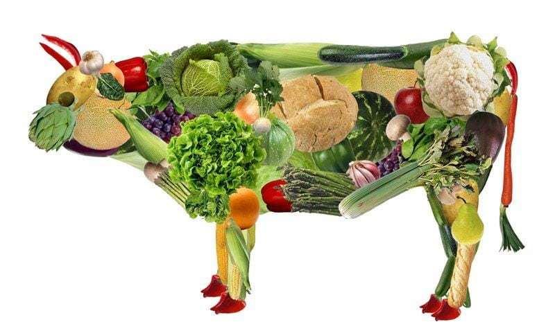 La verdad sobre el veganismo